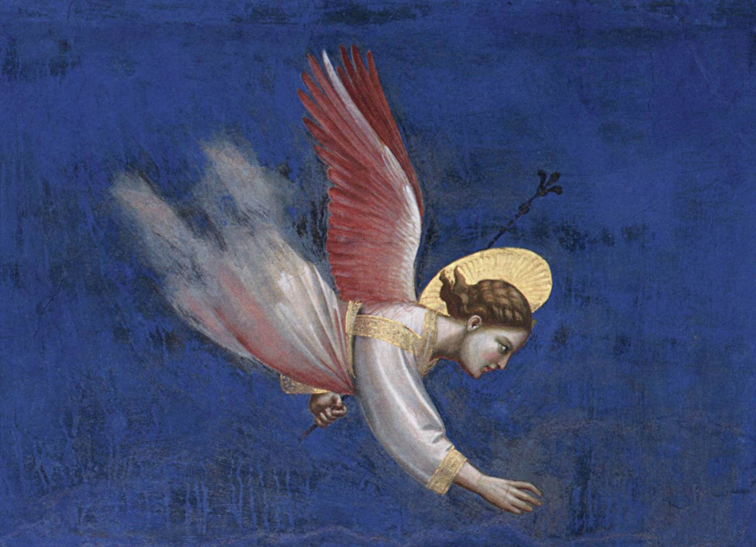 No. 5 Scenes from the Life of Joachim: 5. Joachim's Dream (detail)GIOTTO di Bondone.