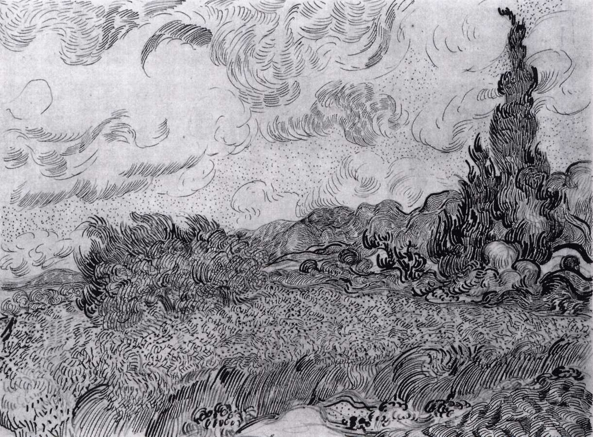 Line Drawing Van Gogh : Drawings saint rémy auvers sur oise