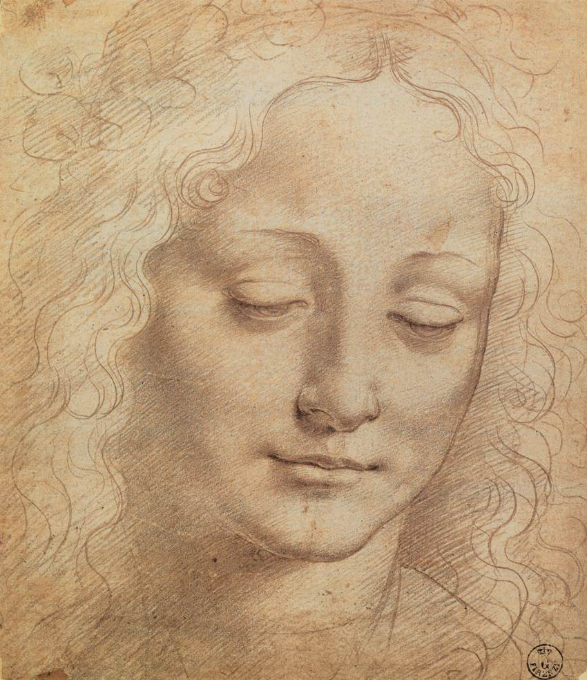 female head by leonardo da vinci. Black Bedroom Furniture Sets. Home Design Ideas
