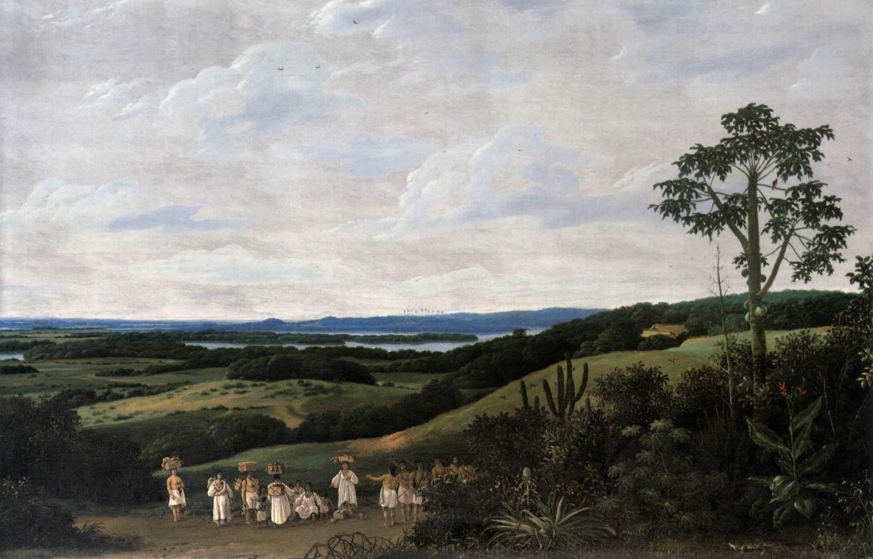 Brazilian Landscape by POST, Frans